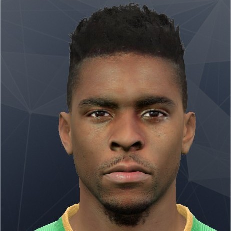 Ryan Donk PES2017 by Rednik